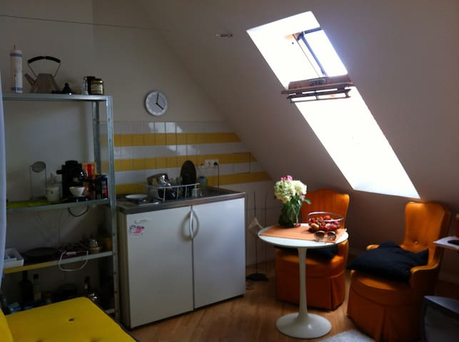 1 room rooftop apartment