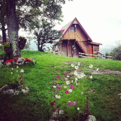 wood house (ethno household saponjic) 8 persons