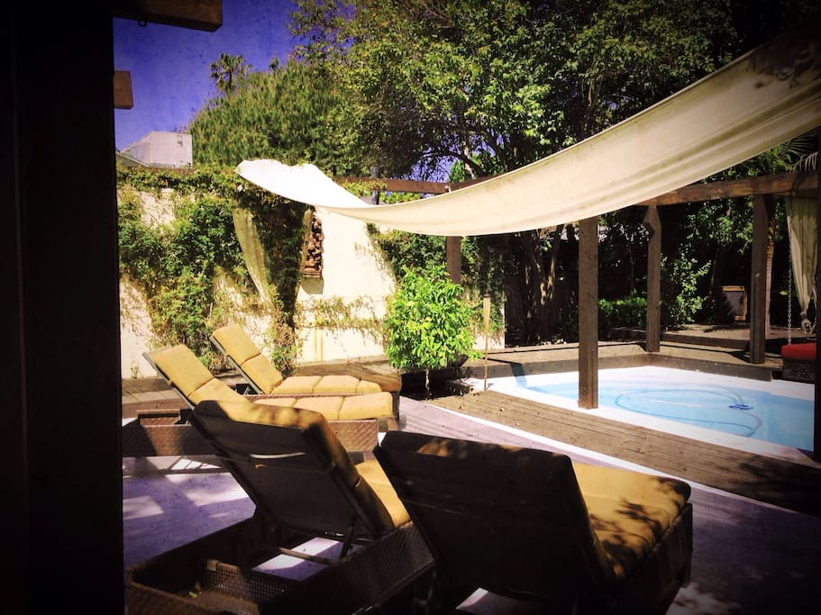 The Pool: Designed on television for HGTV by Jamie Durie
