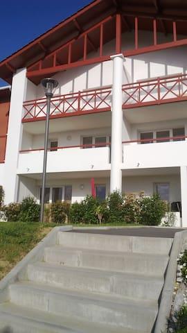 Chaleureux appartement au RDC  avec terrasse.