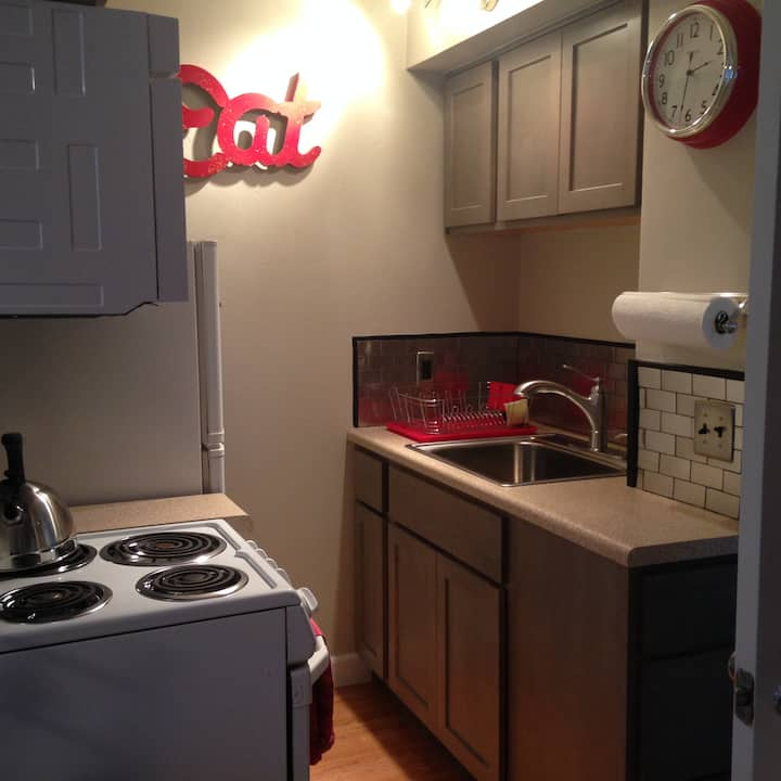Beautiful Downtown One Bedroom
