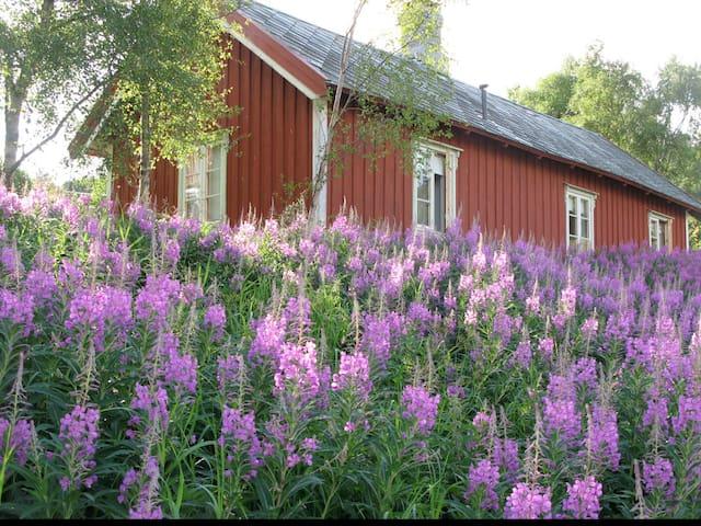 Gamle Helset Gård - Mastua - Stadsbygd - Cabin