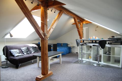 Rooftop apartment near Basel