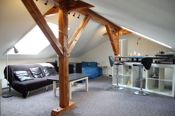 Dachwohnung nahe Basel