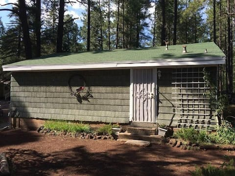 Studio Guest Cottage on the National Forest