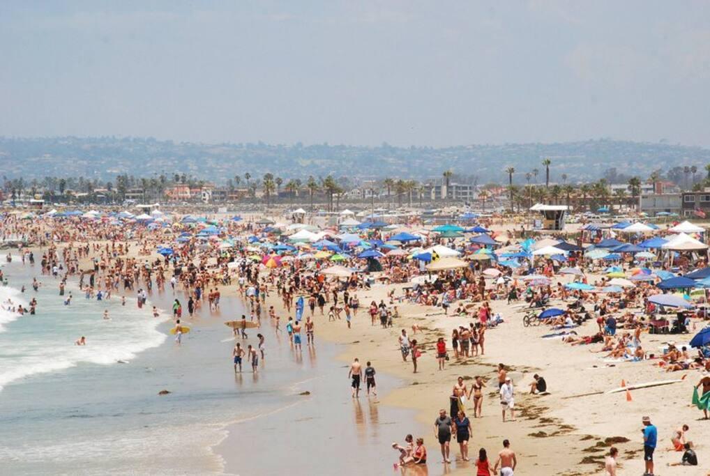 Ocean Beach 1.5 Miles