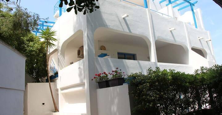 Villa Flora studios and apartments