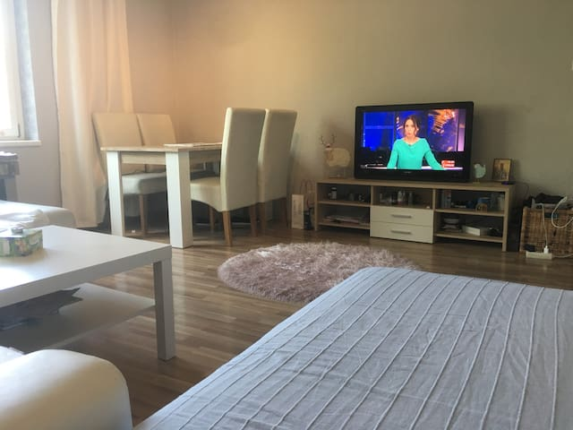 Nice, lovely room near City Centar and Belvadere