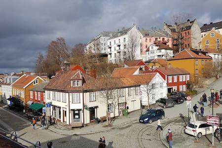 Trondheim: Sentralt på Bakklandet