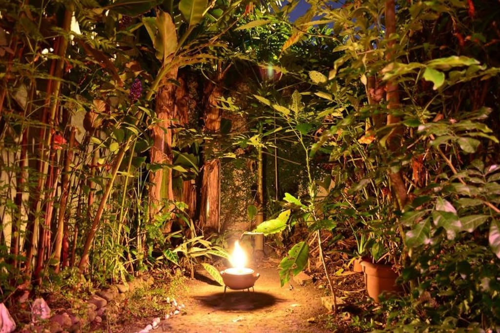 Come unwind in our lovely green garden
