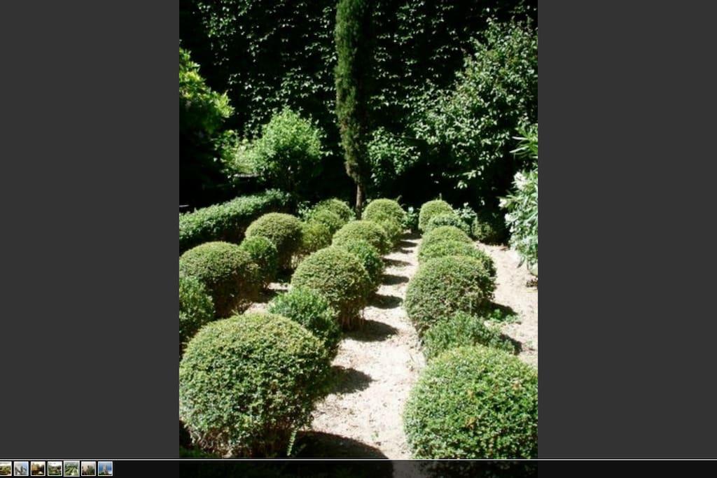 Jardin avec allées de buis