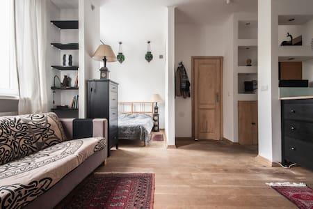Fabulous studio apartment in the heart of Warsaw - Warszawa - 公寓