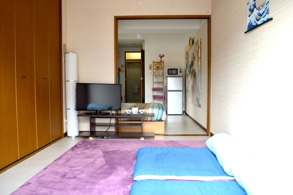 Big apartment by Japanese standards with two separate rooms.