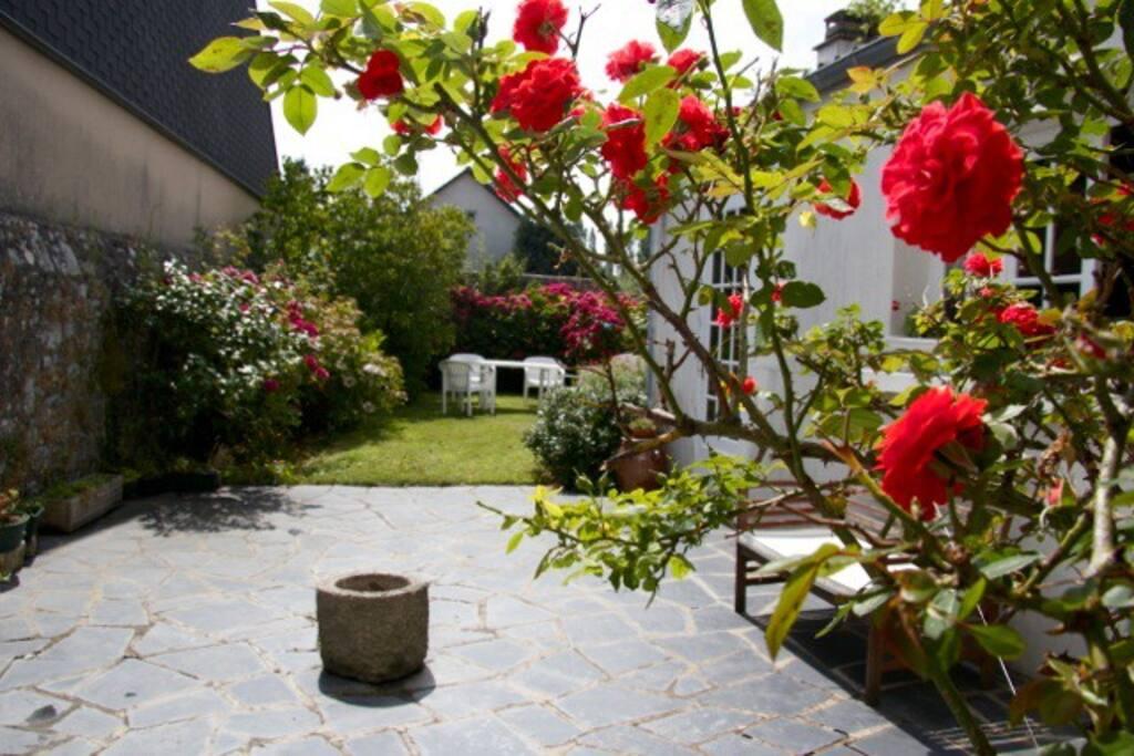 Jardin fleuri. Roses de saison