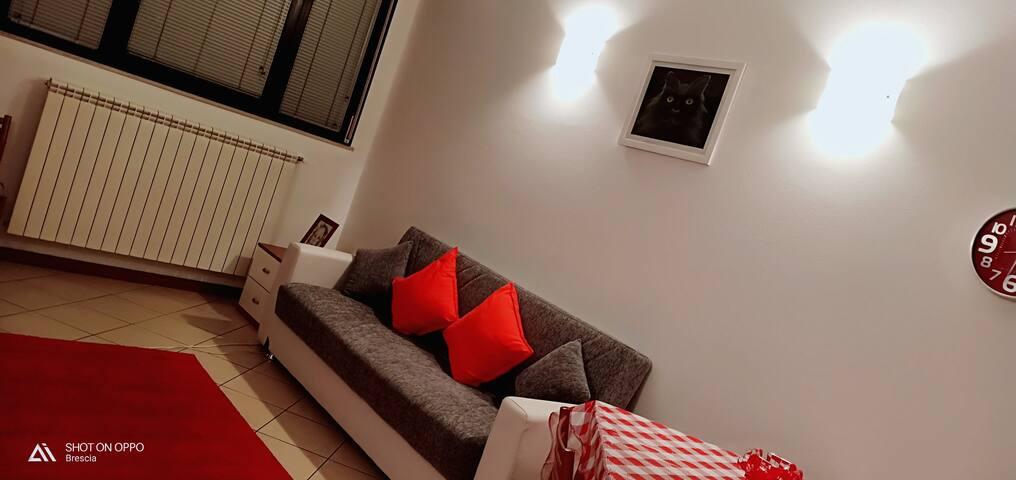 Casa del gatto