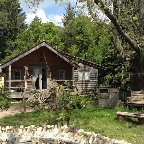 Sika Lodge,Forest eco cabin. 3 night minimum - Wareham - Hytte