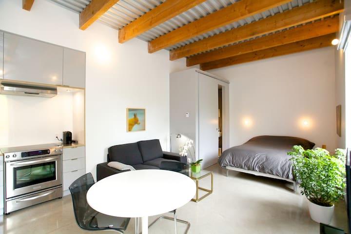 Magnifique studio_Petite-Italie