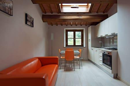 GENOVEFFA Pisa Lucca Firenze - Buti