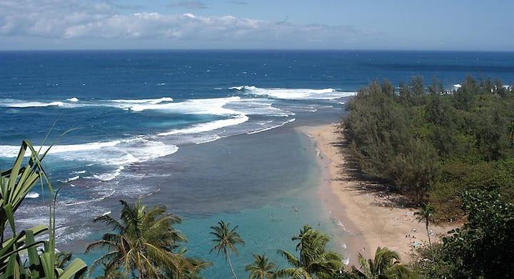 Island of Kuai, resort on the beach !