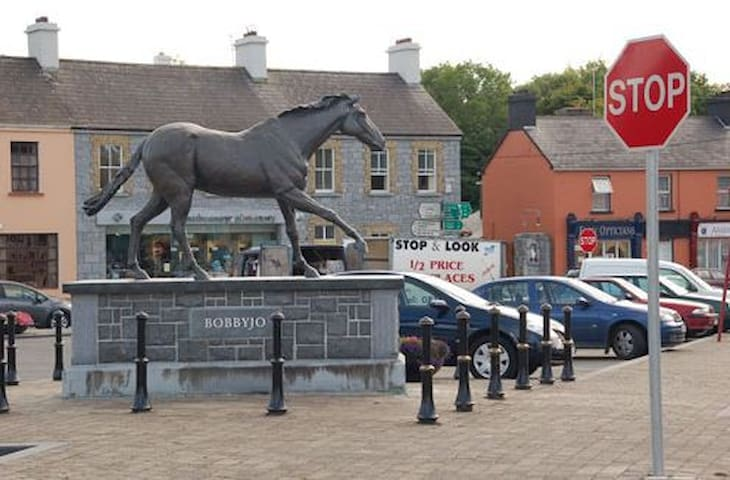 'BobbyJo' Winner 1989 Grand National - a local hero and permanent resident