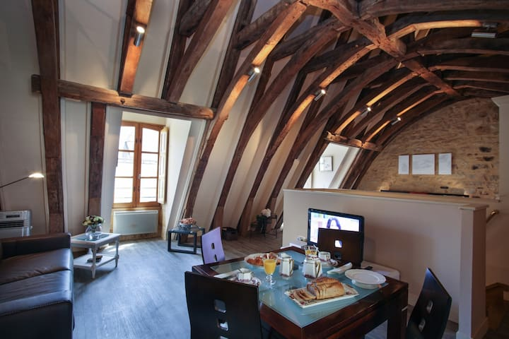LOFT LE GRENIER DU CHAPITRE - Sarlat-la-Canéda - Apartament