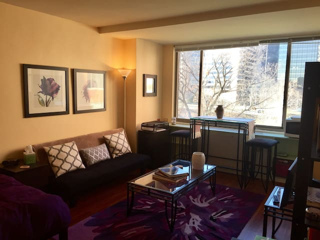 Centrally Located Studio Apartment near DC - Arlington