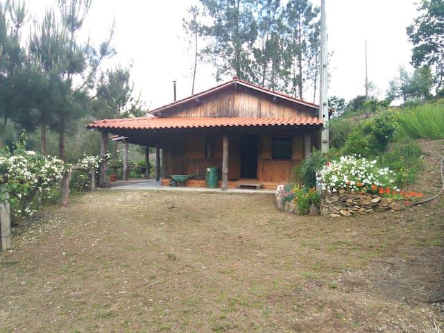 Cabana de Montanha e Rio a Unique Experience - Oliveira do Arda - Stuga