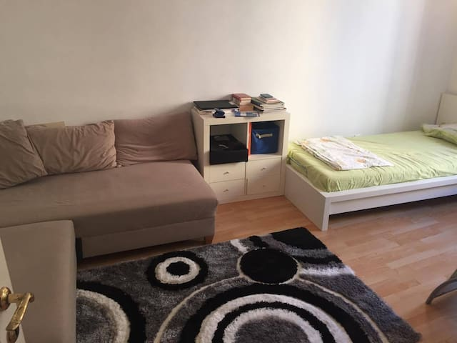Peaceful, central flat with nice people - Wien - Flat