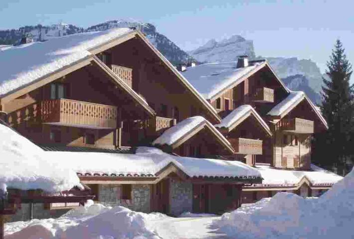 Appartement SKI Carroz d'Araches ménage/linge - Arâches-la-Frasse - Apartment