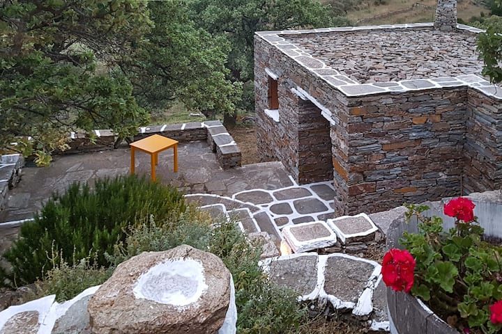 Casa de piedra bajo roble real