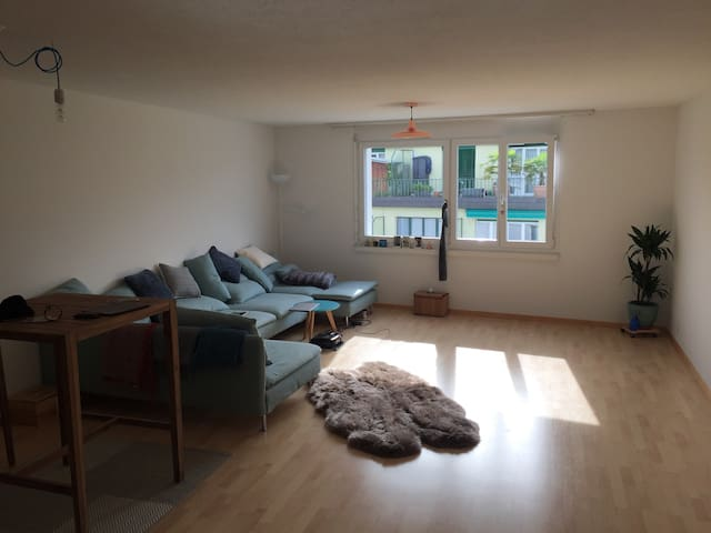 Spacious flat situated centrally - Luzern - Lejlighed