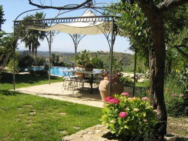 Luxury villa, pool, jacuzzi - Caltagirone - Villa