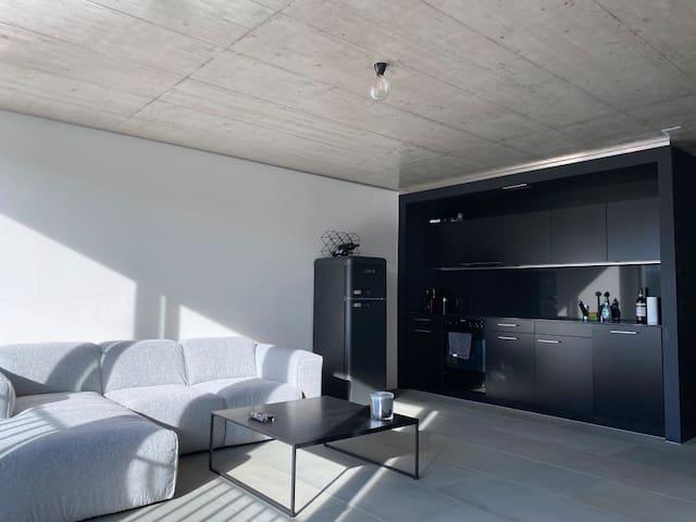 Modern industrial loft (64m2) in central Zurich