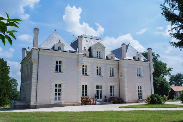 Romantic Château in the vineyards - La Haie-Fouassière - Castle