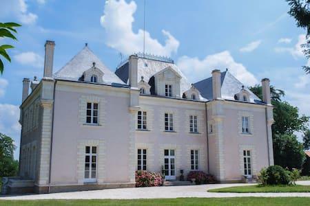 Romantic Château in the vineyards - La Haie-Fouassière