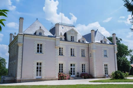 Romantic Château in the vineyards - La Haie-Fouassière - Linna