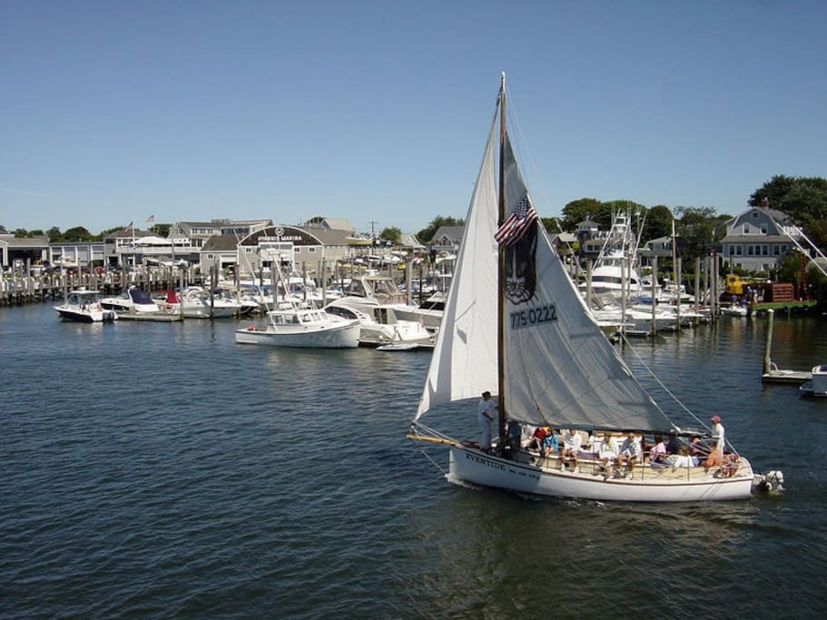Hyannis Harbor is 3 blocks away.Boats to Nantucket, Martha's Vinyard or just sail the harbor...