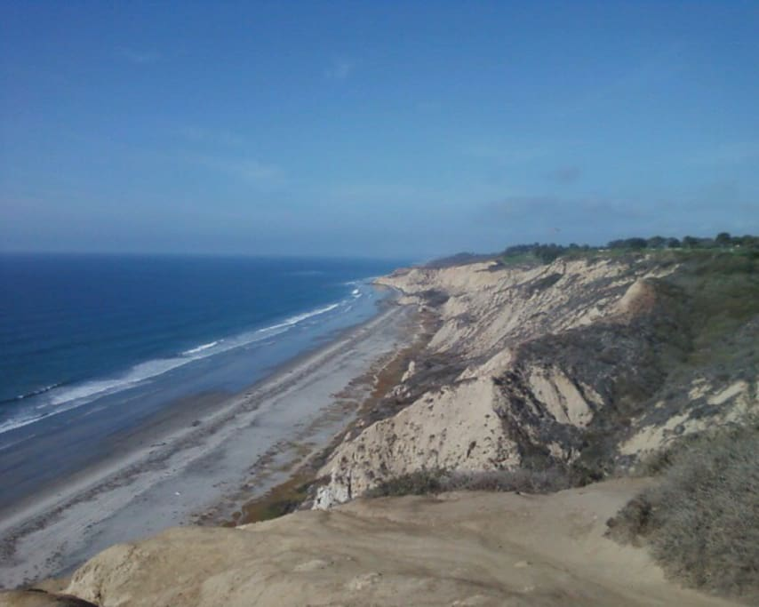 San Diego Beach at Torrey Pines/ Blacks Beach.