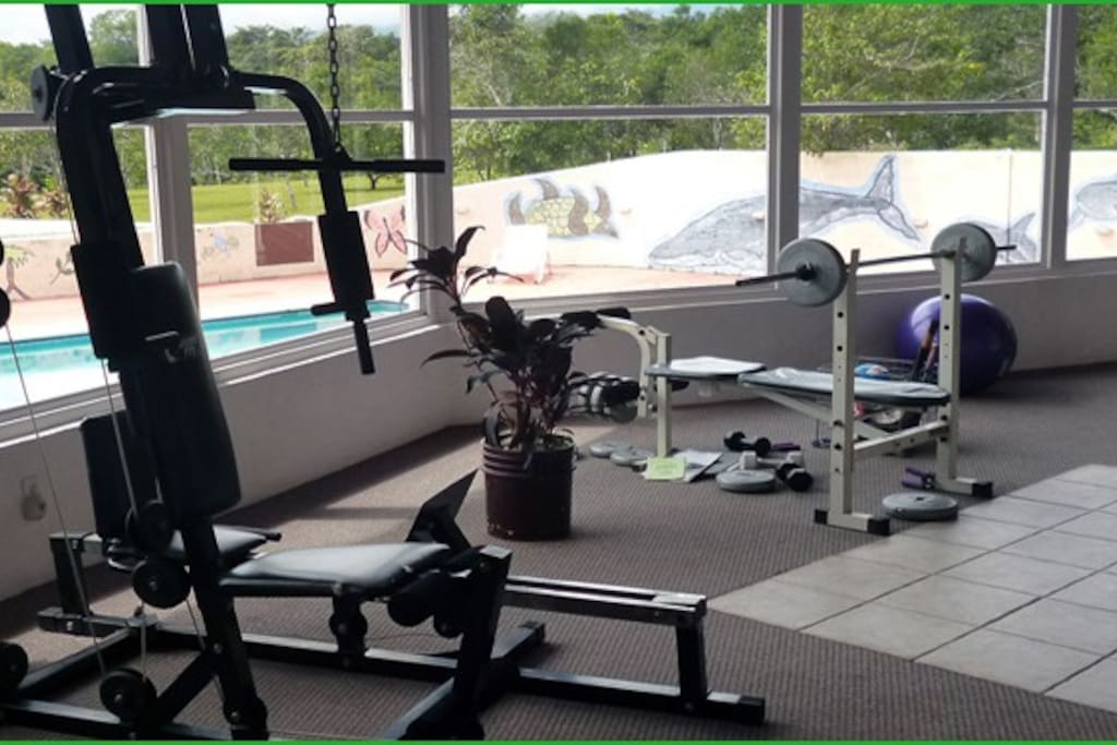 guest gym. free weights, bicycle, weight machine