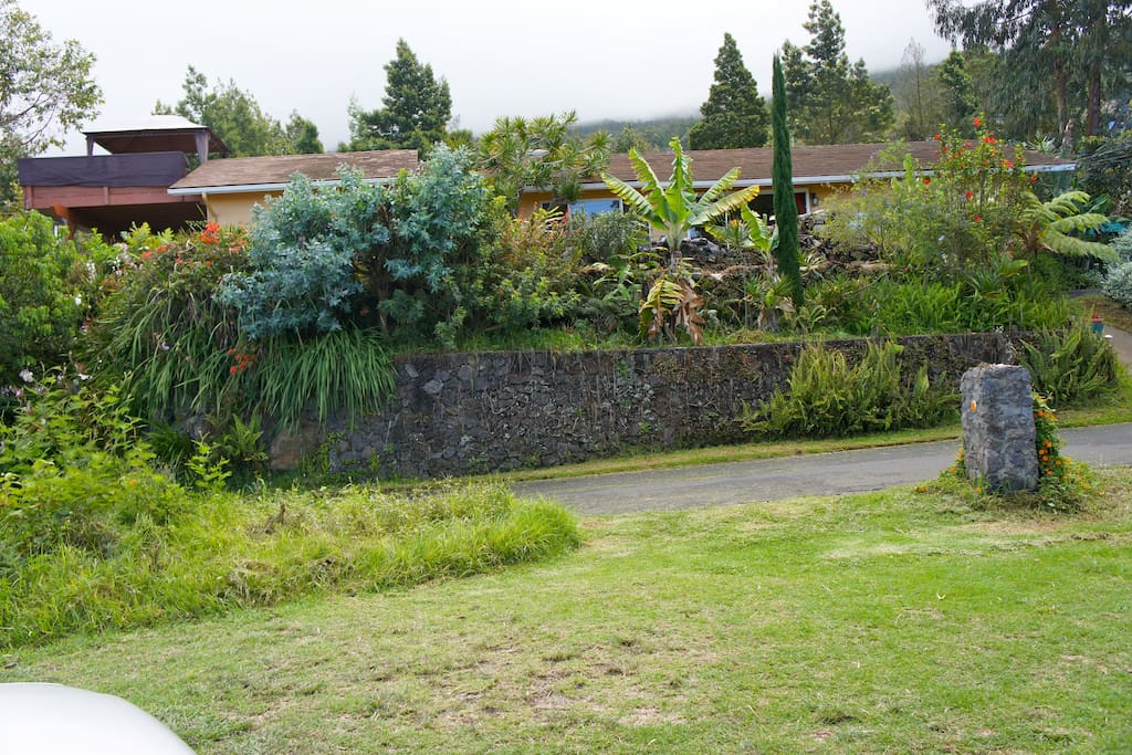 View of the house and the luscious surroundings