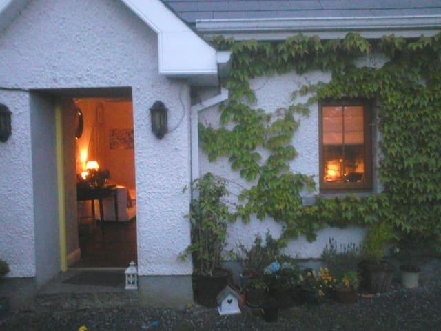 Cosy double room in country cottage Co. Kilkenny - Kilkenny - House