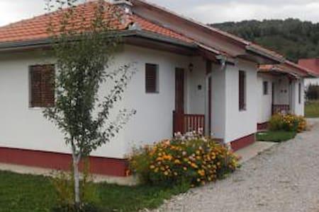 Pastoral village house - Kolašin