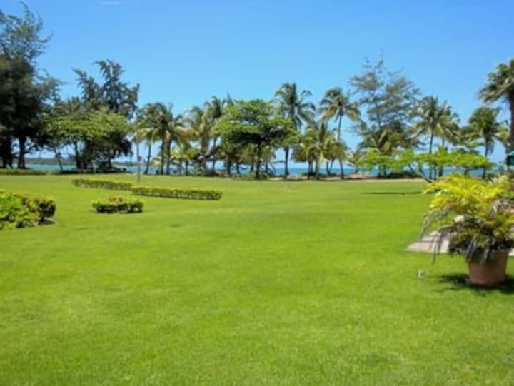 Caribbean Beach Villa ©(™)