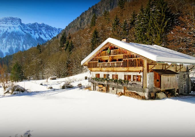 4* chalet. Pool, sauna, jacuzzi, free airport/piste shuttle - OVO Network