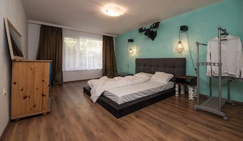 One Bedroom Apartment Rusalka