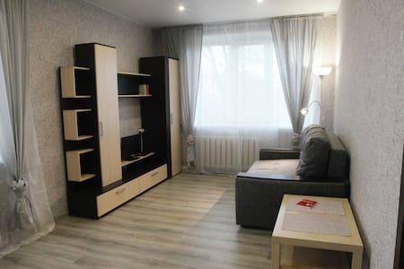 Центр города, уютная 1-комн. квартира у Лавры