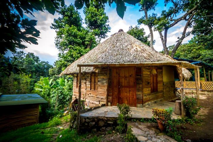 ecological, romantic cabin Colibri - San Juan La Laguna - House