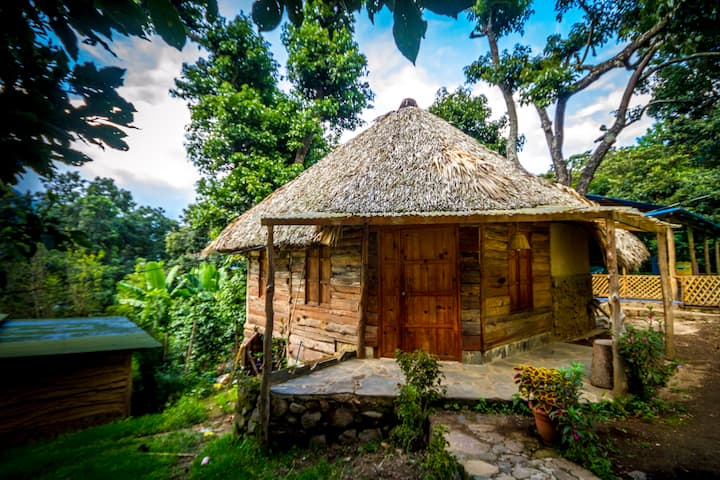 ecological, romantic cabin Colibri