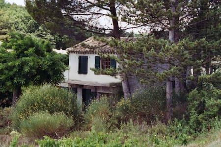 Cabanon provençal (à la semaine) - Vaison-la-Romaine - Hus
