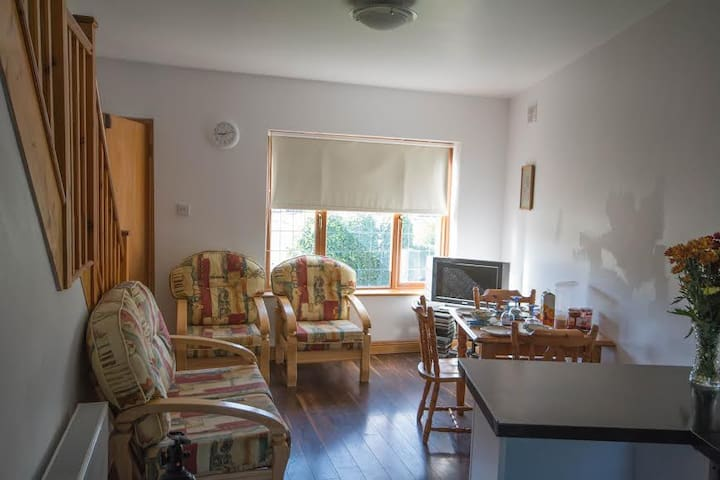 Double Room and Single Room - Dublin - Apartemen